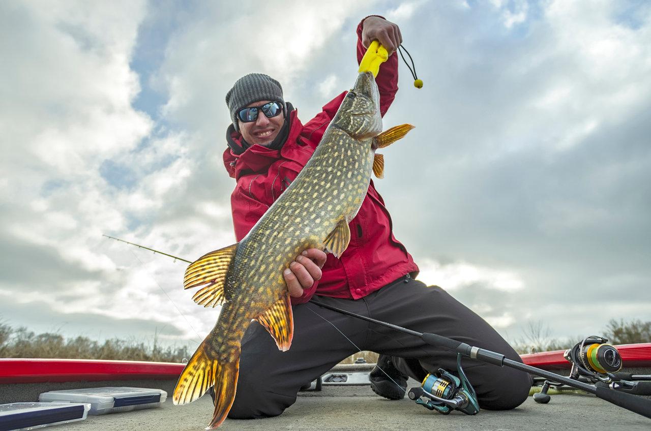 Ein glücklicher Angler kniet auf einem Boot und hält einen Hecht.